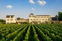 domaine viticole bordelais