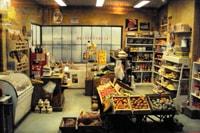 Lyon musée des Miniatures