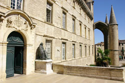 Le musée Languedocien